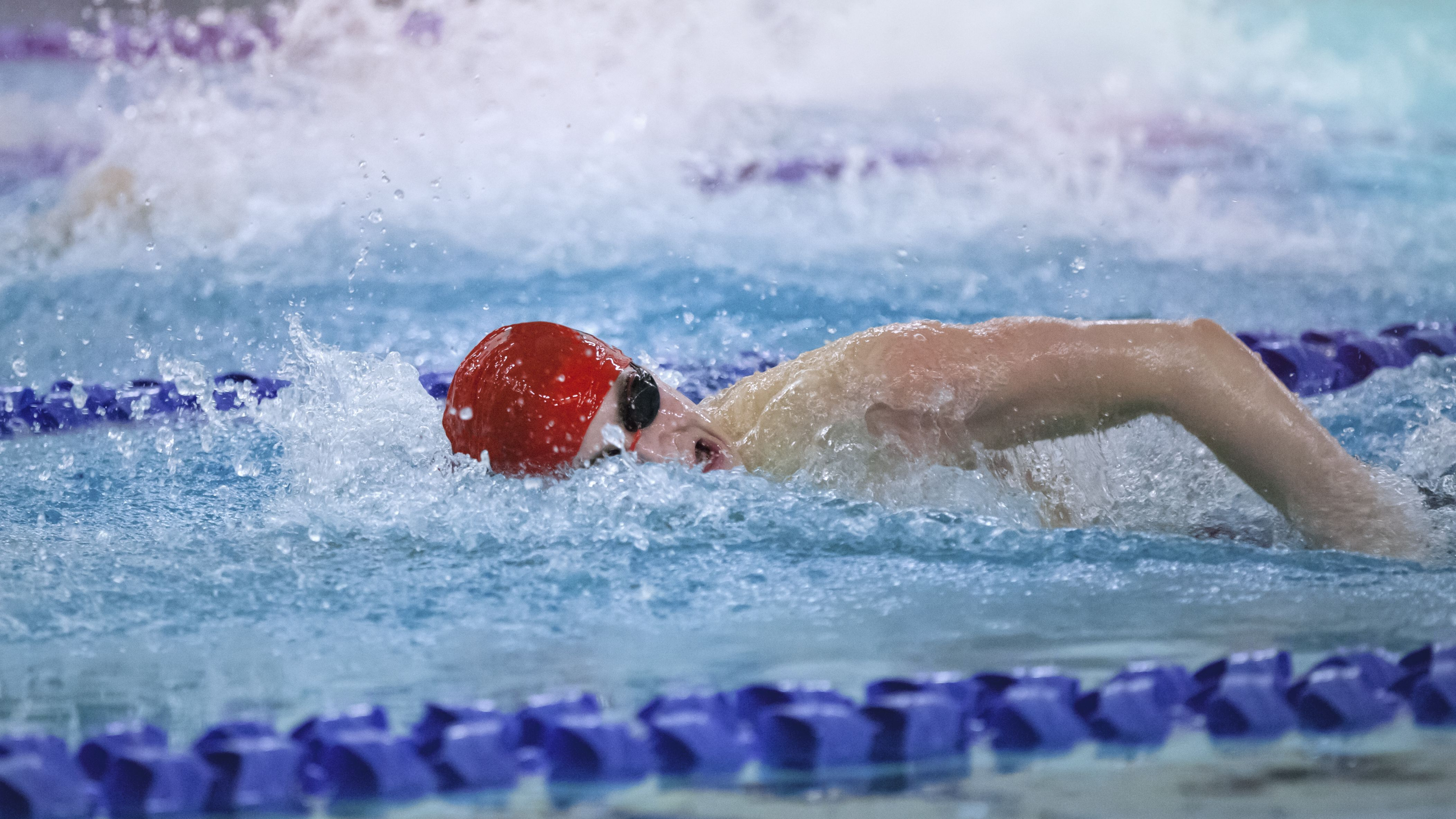Swimming Stroke Length, Stroke Rate and Training