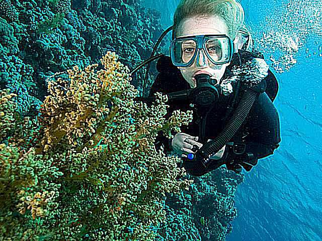 Do You Need to Know How to Swim to Scuba Dive?
