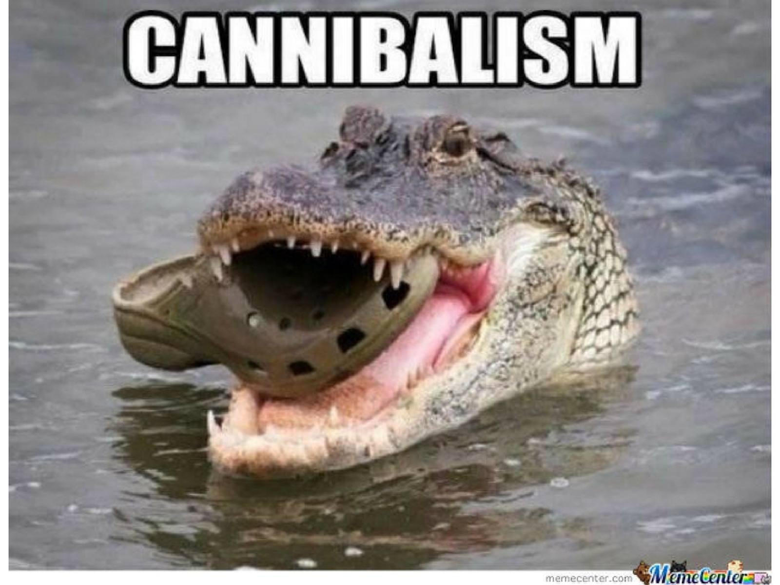 Crocodile Meme
