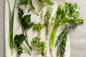 Herbs laid out on cloth