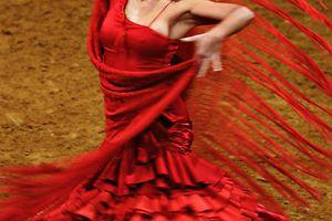 Flamenco - Arte y Pasión