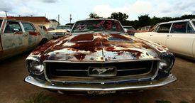 Rusty Mustang