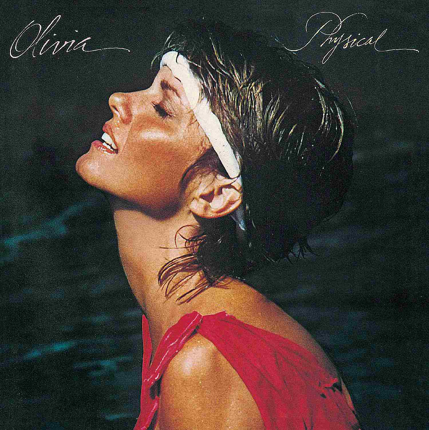 Olivia Newton-John entered the '80s with a fresh, sexy image - which helped her land one of 1981's most popular albums and singles.