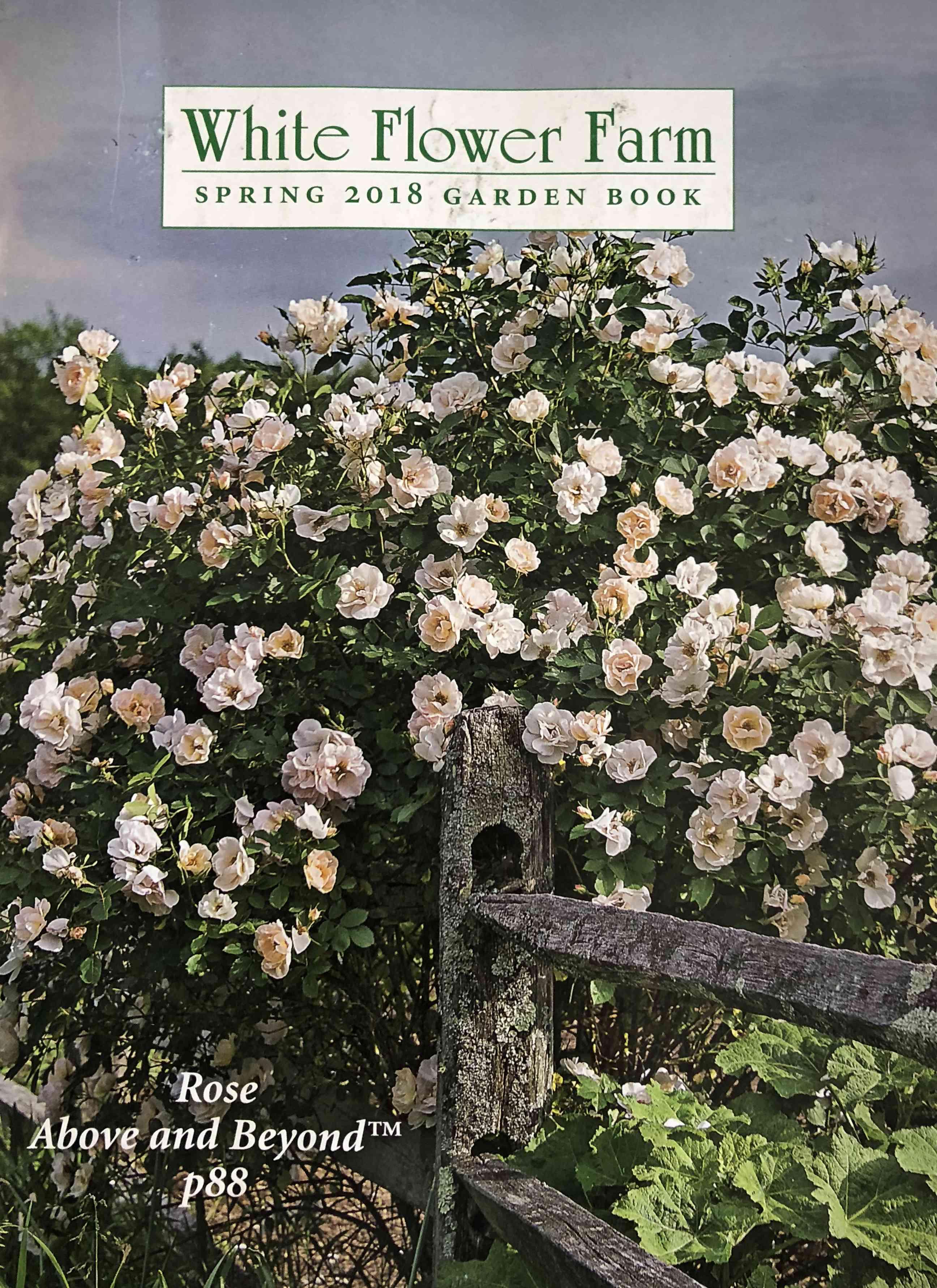The 2018 White Flower Farm catalog