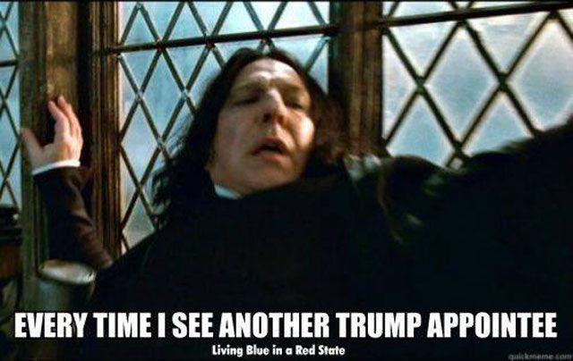Appointee - trump meme