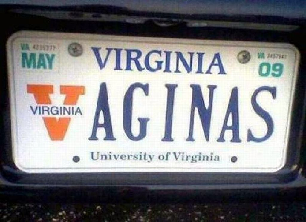 Vaginas license plate