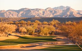 Desert golf course in Arizona with overseeded greens and fairways.