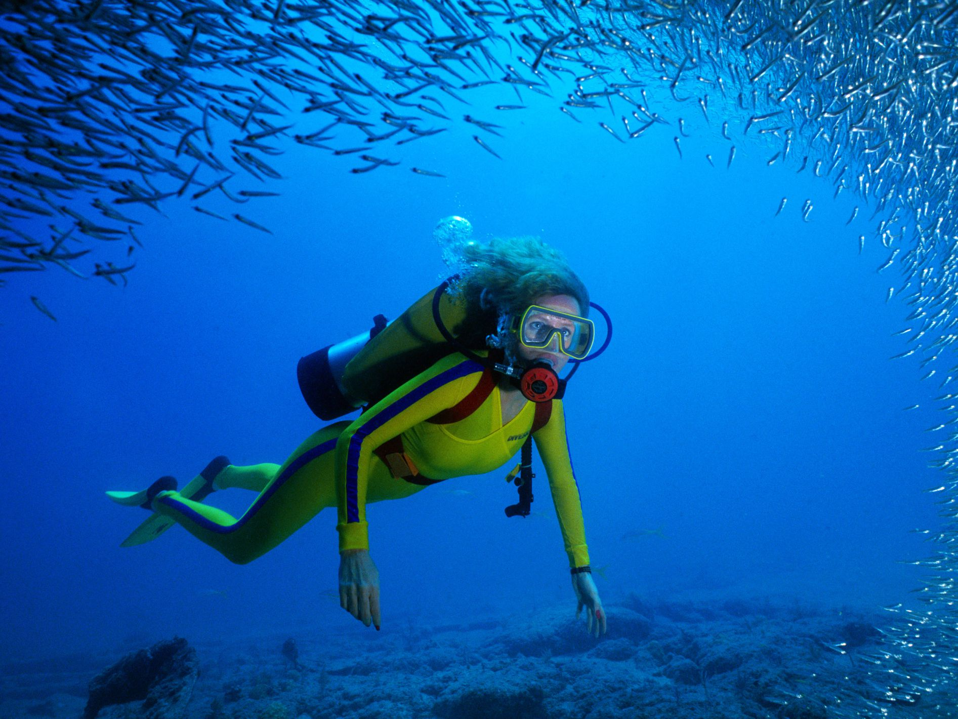Skin Bends Information for Scuba Divers