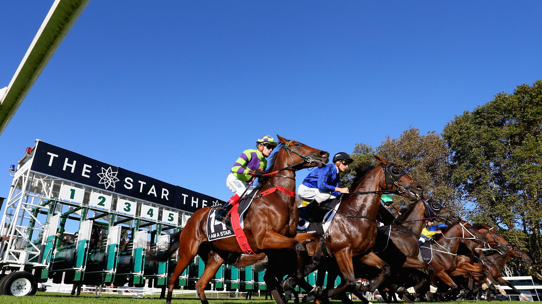 Pick 3 horse betting petkovic vs bouchard bettingexpert