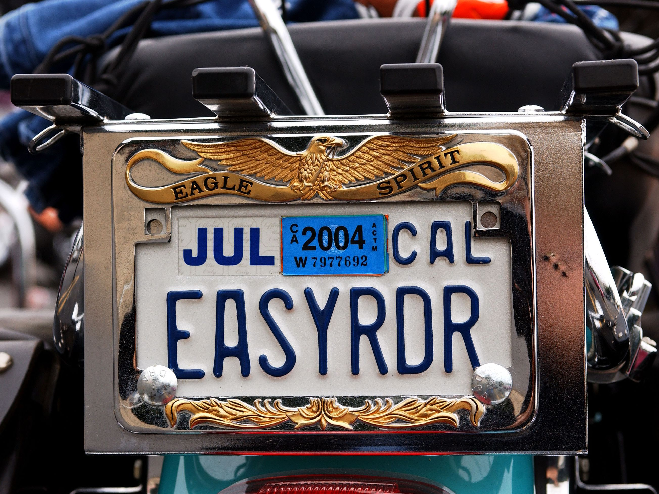MY FAMILY TREE IS FULL OF NUTS FUNNY License Plate Frame Tag Holder