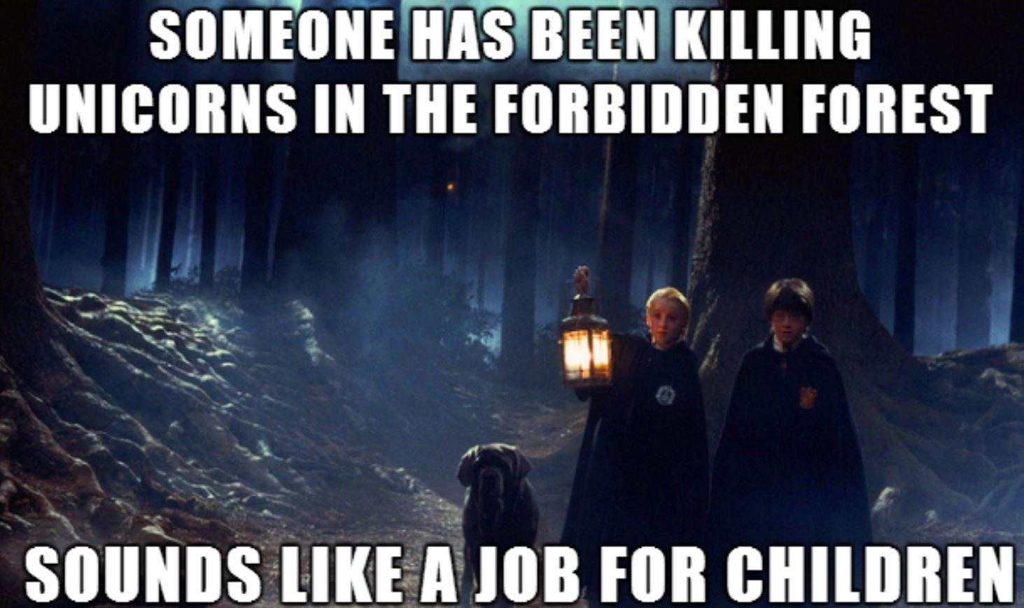 Harry Potter unicorn meme