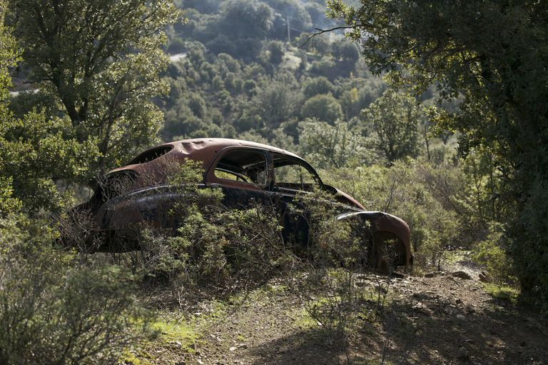 A rusting old car in the woods