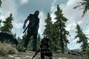 The game Skyrim's character size cheat screenshot