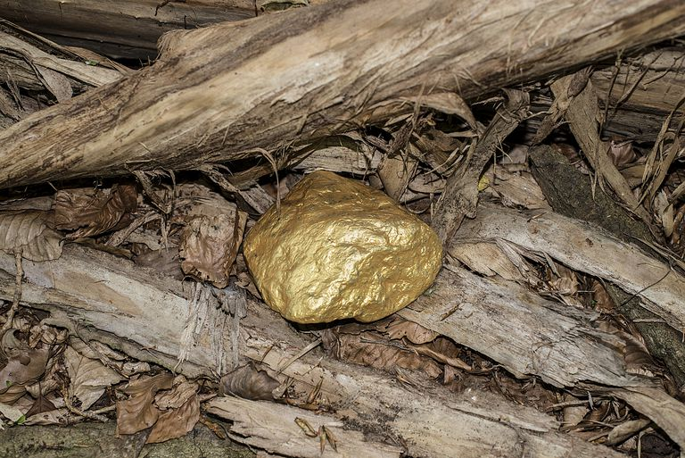 Piece Of Gold in nature surrounded by leaves symbolizing natural prosperity.