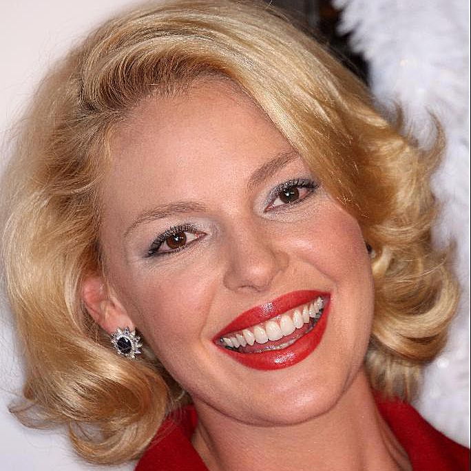 Actress Katherine Heigl attends the 'Marley & Me' film premiere on December 11, 2008 in Westwood, California