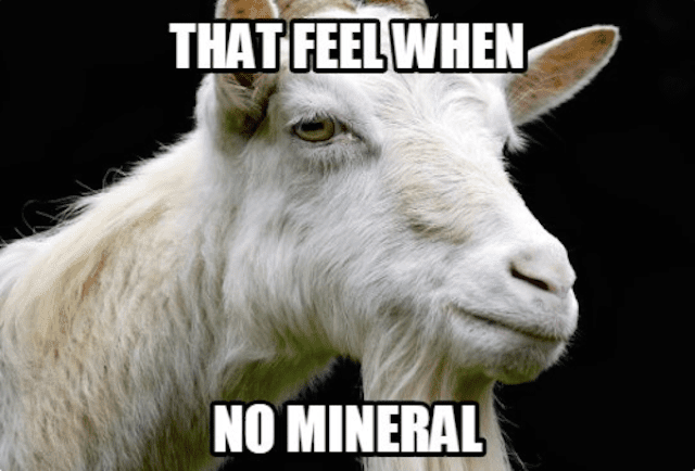 That Feel When