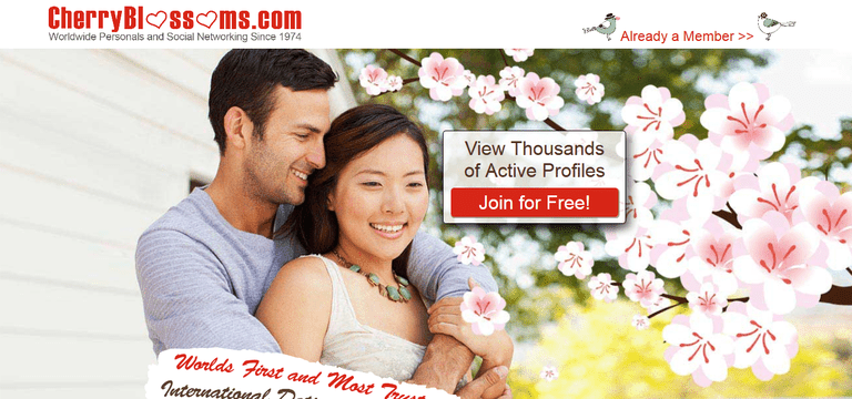 Free asian dating sites in usa
