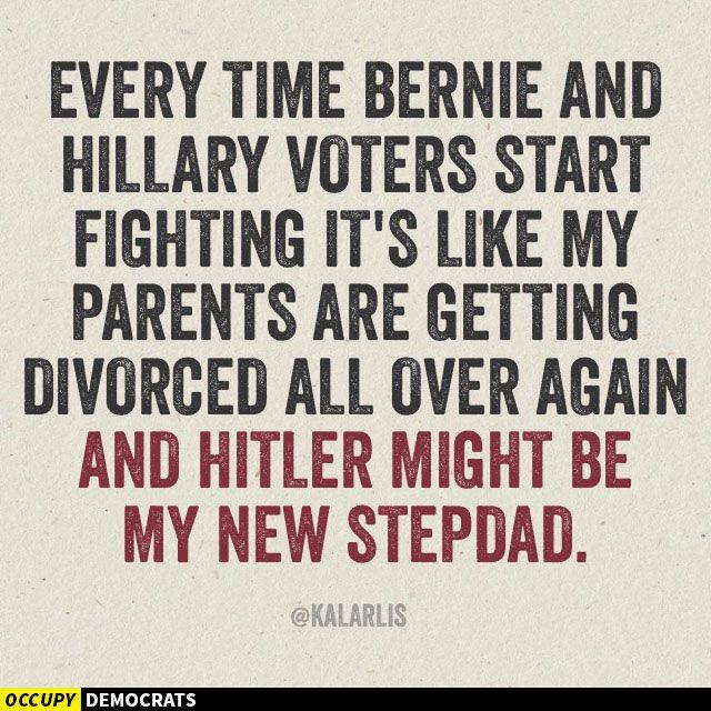 Hillary vs Bernie Voters