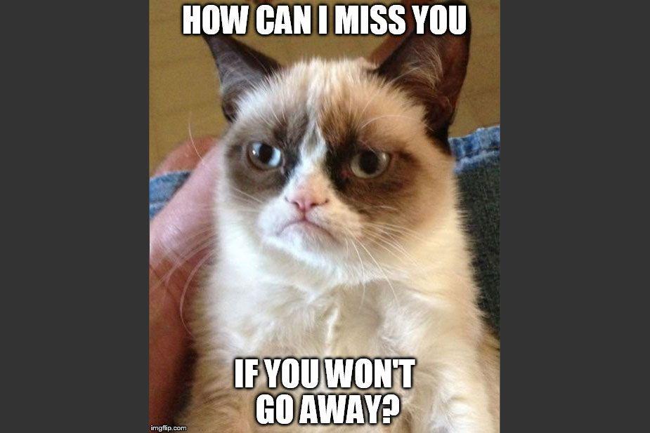 I Miss You Grumpy Cat memee