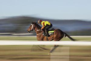 Blurred motion of jockey riding horse