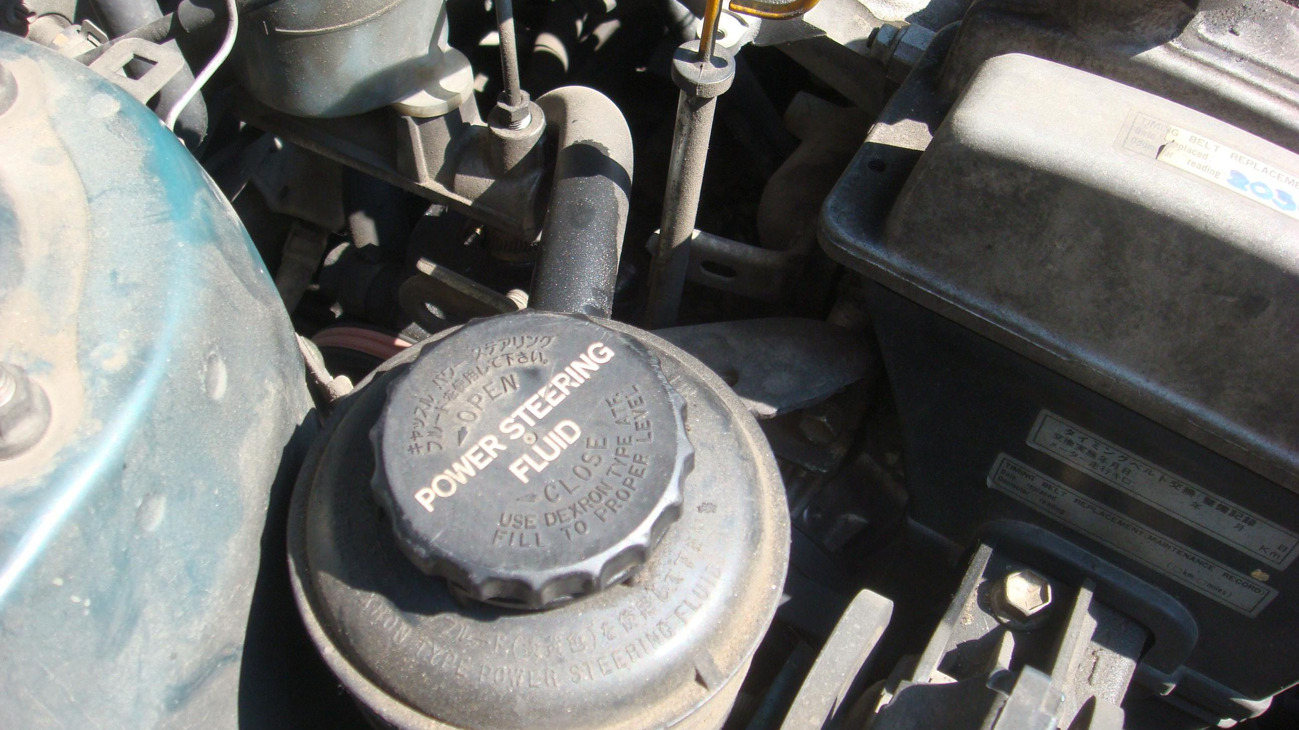 Checking and Filling Power Steering Fluid