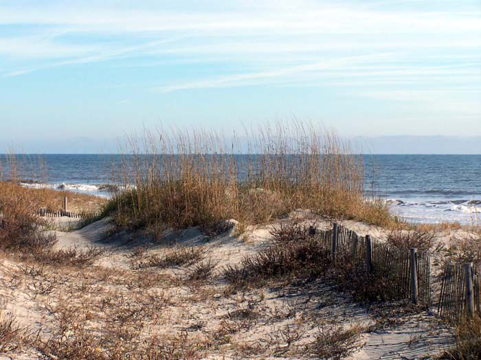 Seascape Reference Photos for Artists: Tybee Island Beach 4