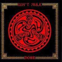 Gov't Mule's Dose