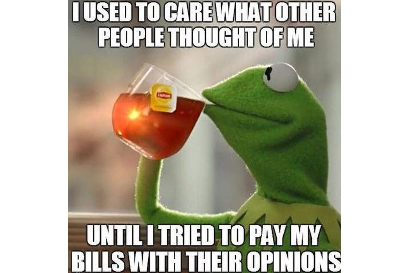 Kermit drinking tea: I use to care what other people thought of me. Until I tried to pay my bills with their opinions.