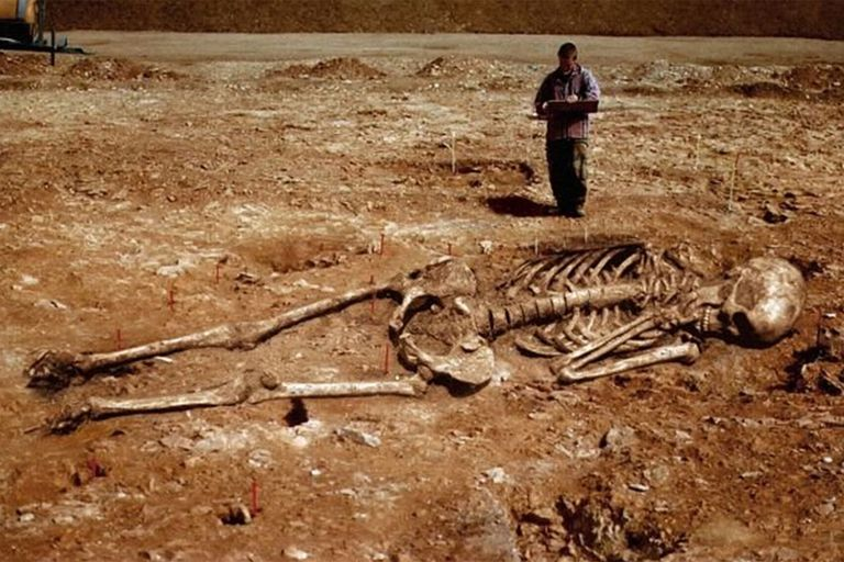 "Netlore Archive: A series of viral images is offered up as proof that fossilized skeletons of actual human giants, alleged to be the remains of biblical Canaanites or ""Nephilim,"" were recently dug up by archaeologists in"