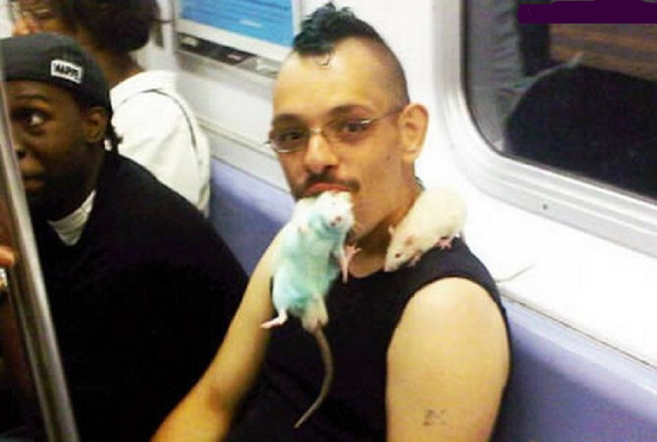rat in mouth subway