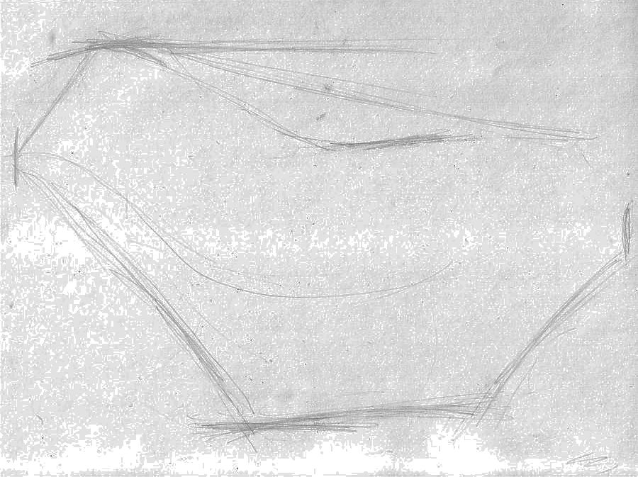 sketching a horse -the outer boundaries