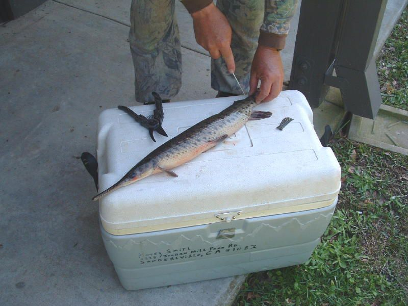 First step in cleaning a gar.