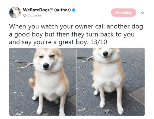 24 Hckin Funny Tweets From We Rate Dogs