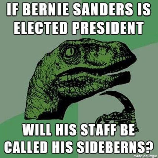 Bernie Sanders Sideburns