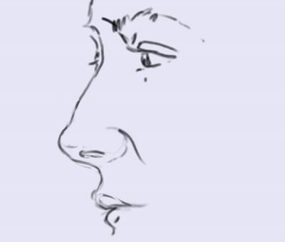 Drawing the Nose in Profile