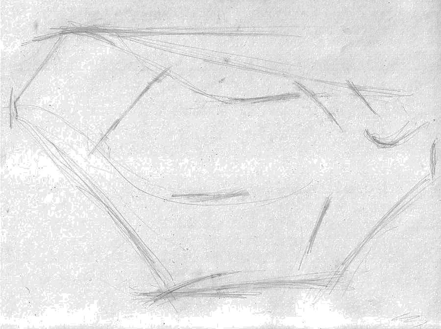 continuing to work on the structural sketch