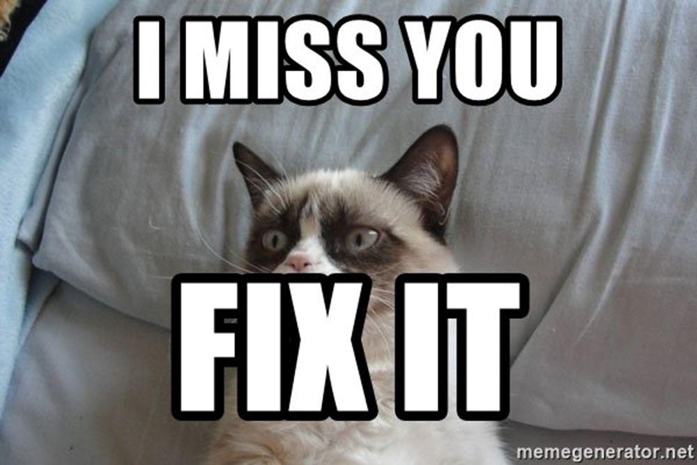 Grumpy Cat misses you.