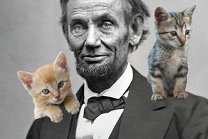Abraham Lincoln and kittens