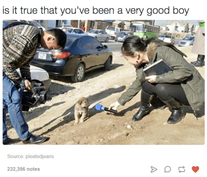 good boy interview
