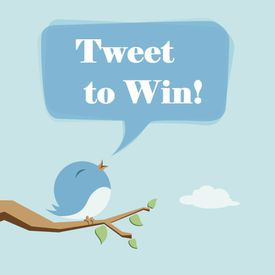 Tweet to Win: All About Twitter Sweepstakes