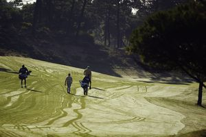 Golfers walking up a fairway with morning dew still on the ground