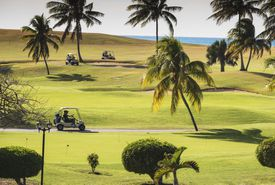 Golf carts traveling on cart paths at a golf course