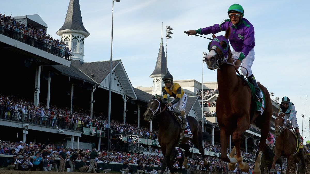 Horse racing betting terms boxer college football betting lines week 14