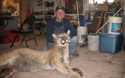 Was a 1,800-Lb  Wild Boar Really Shot in Conroe, Texas?