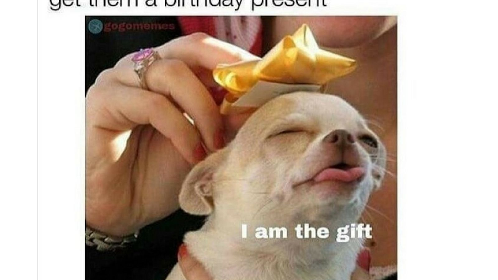 The 15 Best Happy Birthday Memes Of 2020