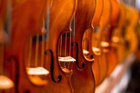 Full Frame Shot Of Violins At Shop