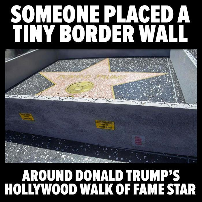 Funny Donald Trump Pictures And Viral Images