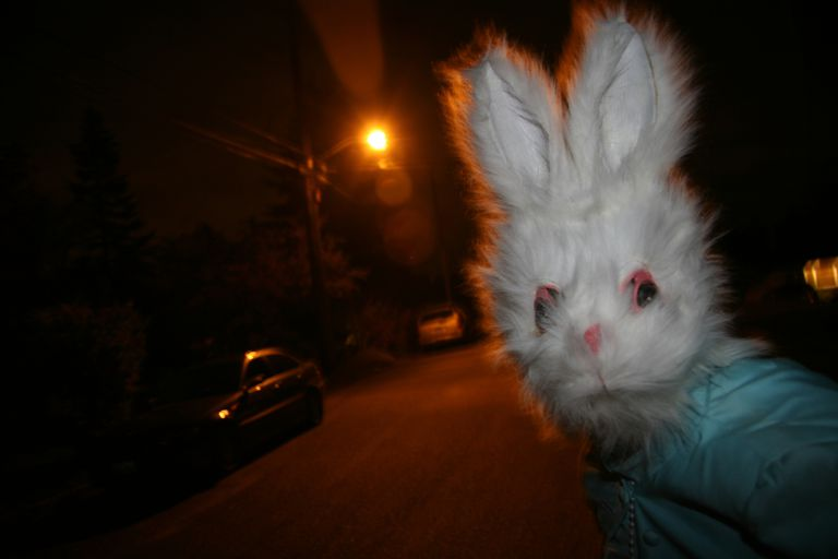 Man in bunny costume