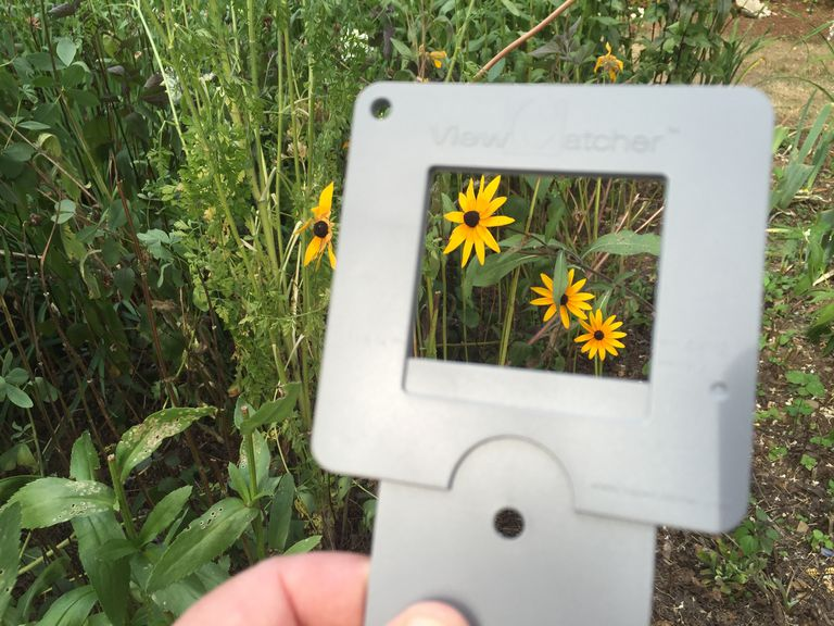 Composing a painting using a viewfinder