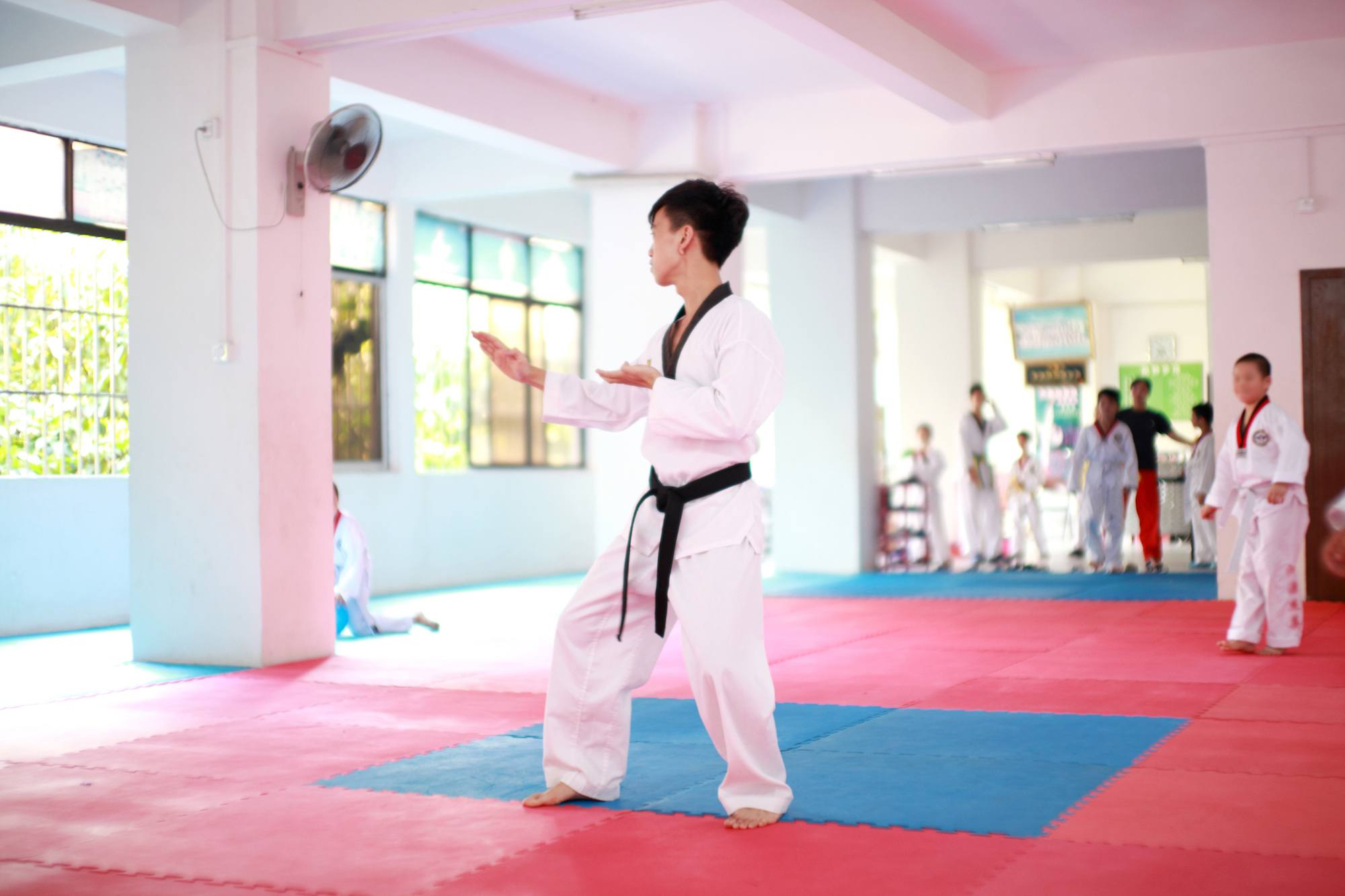 Differences Between Taekwondo vs  Karate